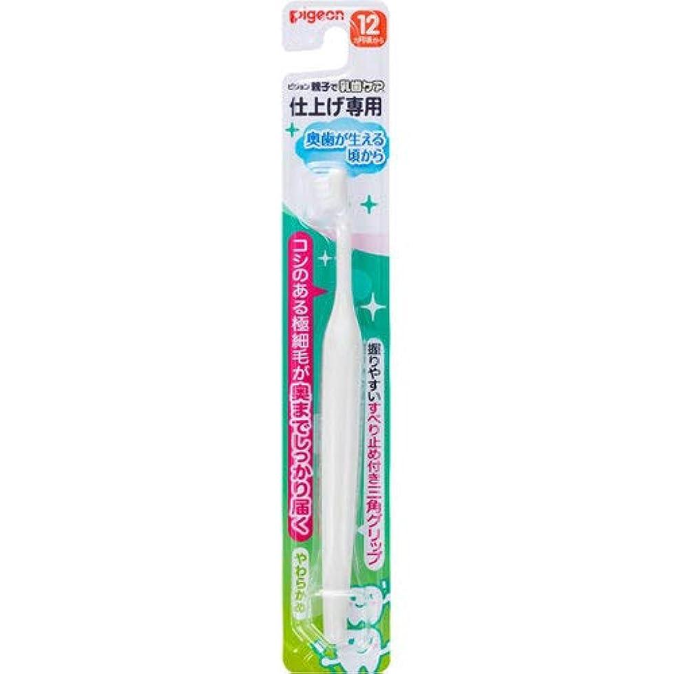 ポーター認可伝染性仕上げ専用歯ブラシ 奥歯が生える頃から
