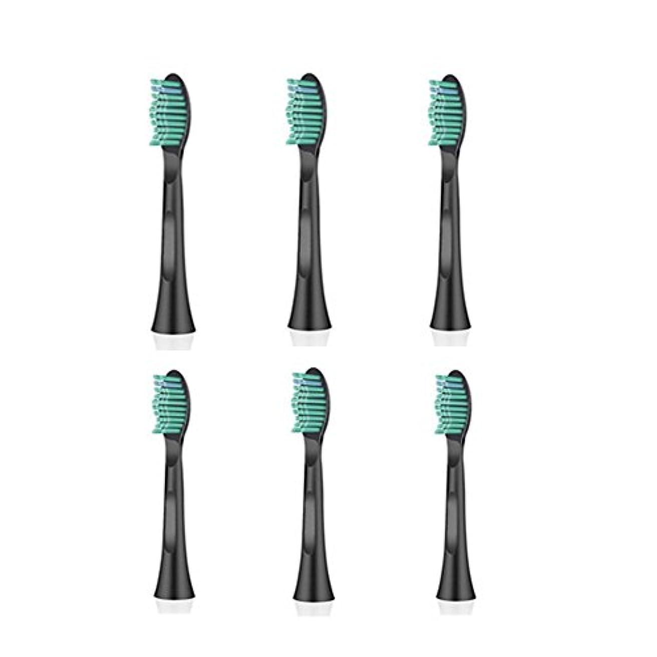 欠乏彫刻家ピルファーITECHNIK 電動歯ブラシ 音波式歯ブラシ 替えブラシ 6本入 黒い