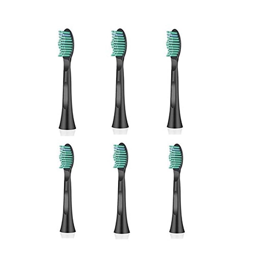 エジプト人大混乱洞察力ITECHNIK 電動歯ブラシ 音波式歯ブラシ 替えブラシ 6本入 黒い