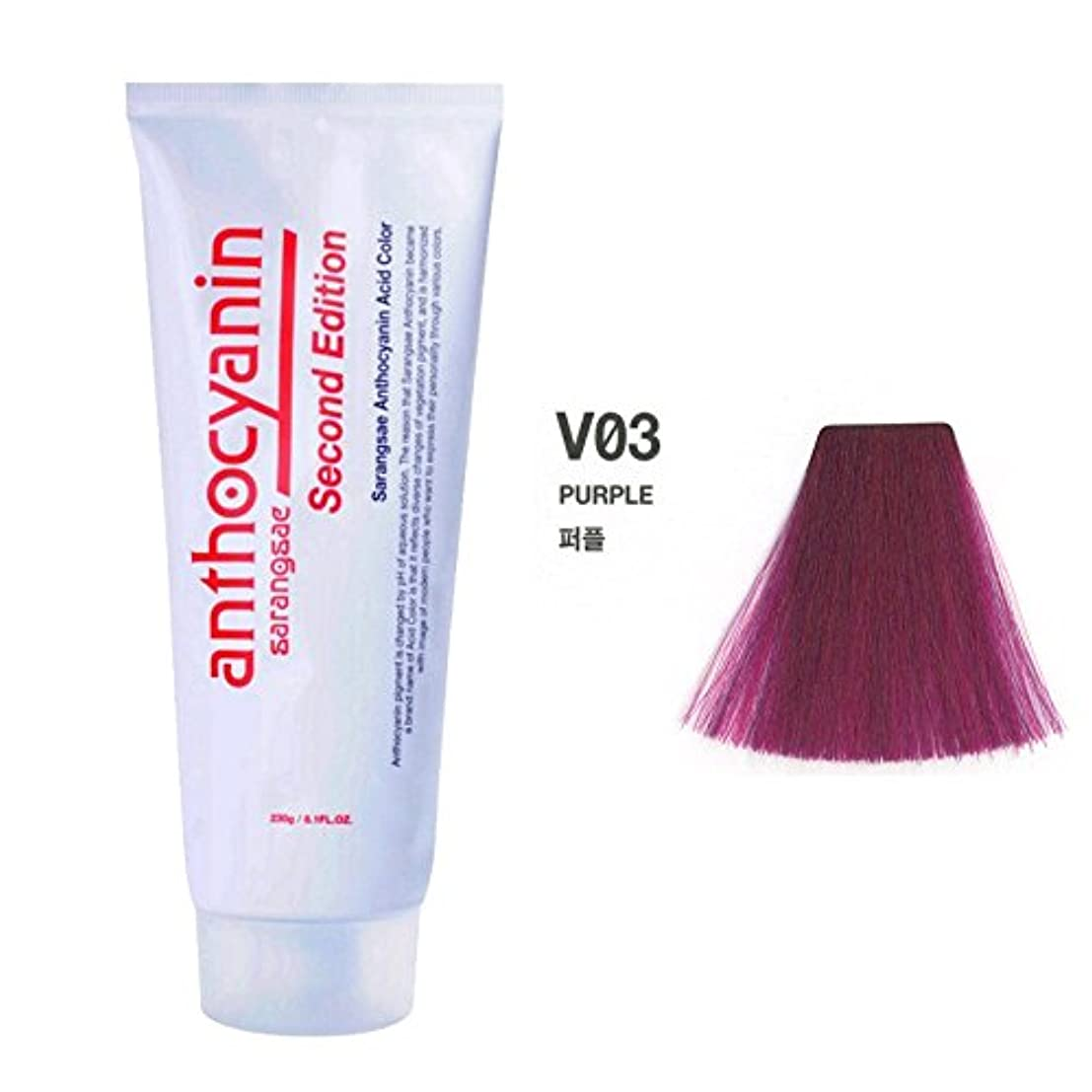 知恵ルネッサンス変化ヘア マニキュア カラー セカンド エディション 230g セミ パーマネント 染毛剤 ( Hair Manicure Color Second Edition 230g Semi Permanent Hair Dye) [並行輸入品] (V03 Purple)