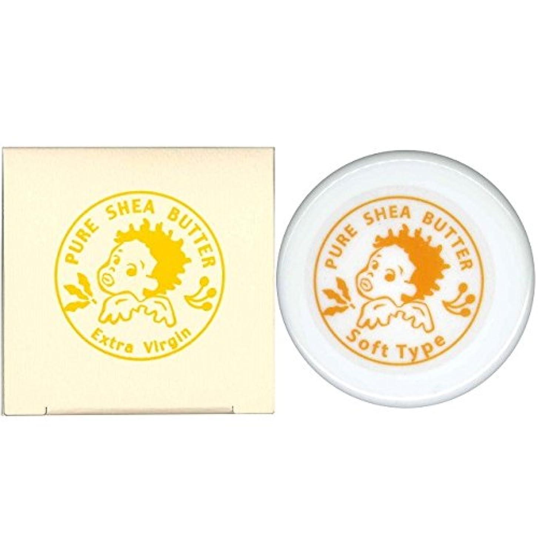 レイアカバー食物マザーアース エクストラヴァージン シアバター ボディバーム ソフトタイプ 30g