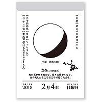 新日本カレンダー 2019年 月と暦 カレンダー 日めくり NK8812 (2019年 1月始まり)