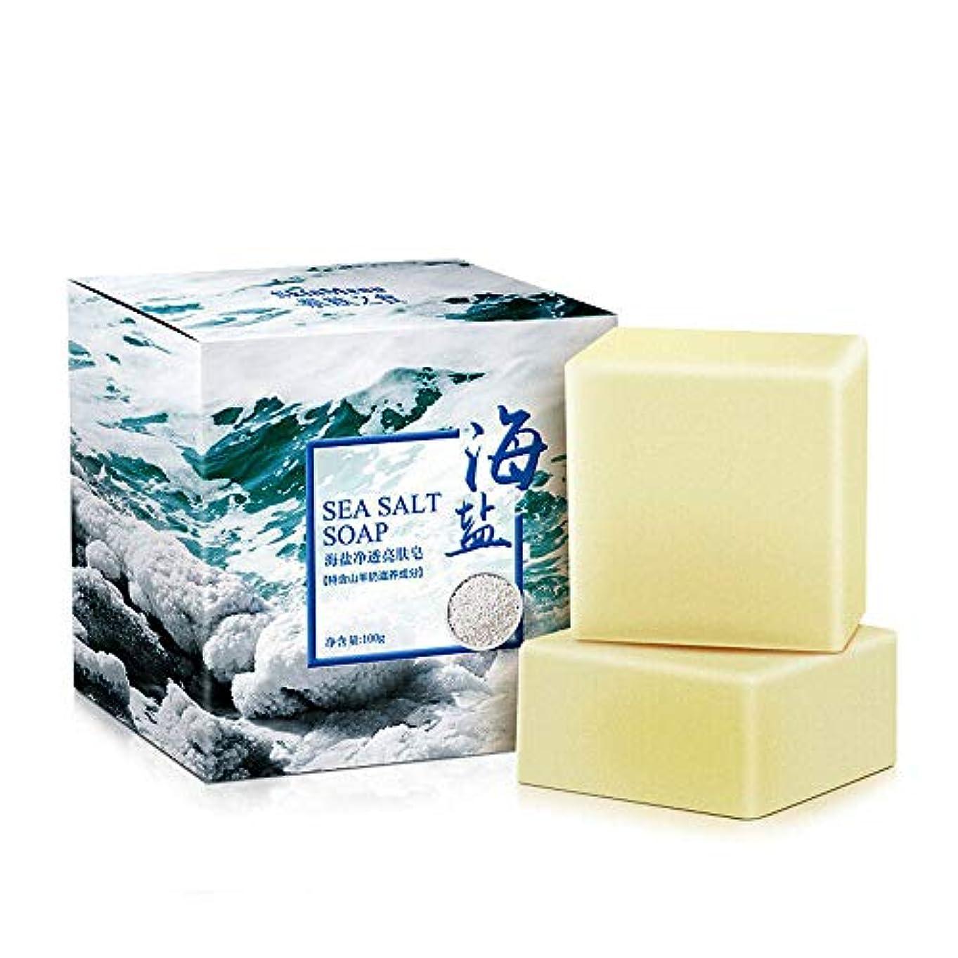 せっけん 石鹸 海塩 山羊乳 洗顔 ボディ用 浴用せっけん しっとり肌 植物性 無添加 白い 100g×1個入 (#2)
