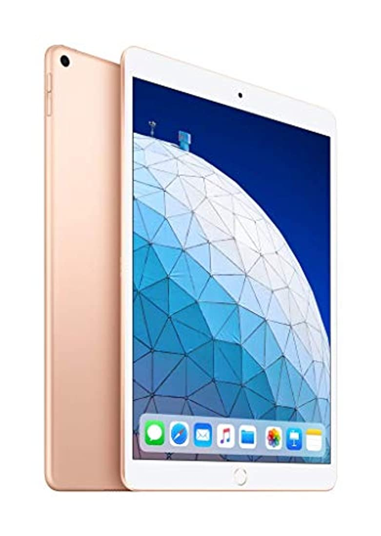マイナス封筒銅10.5インチ iPad Air Wi-Fi 256GB - ゴールド (最新モデル)