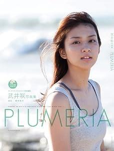 武井咲写真集『PLUMERIA』 DVD付