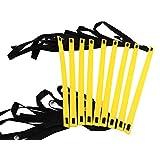 LuckyTail トレーニング ラダー 収納袋付き 5m 7m 9m 連結可能 スピードラダー 【 サッカー フットサル 陸上 マラソン 野球 テニス 瞬発力アップ 】 (イエロー, 9m)
