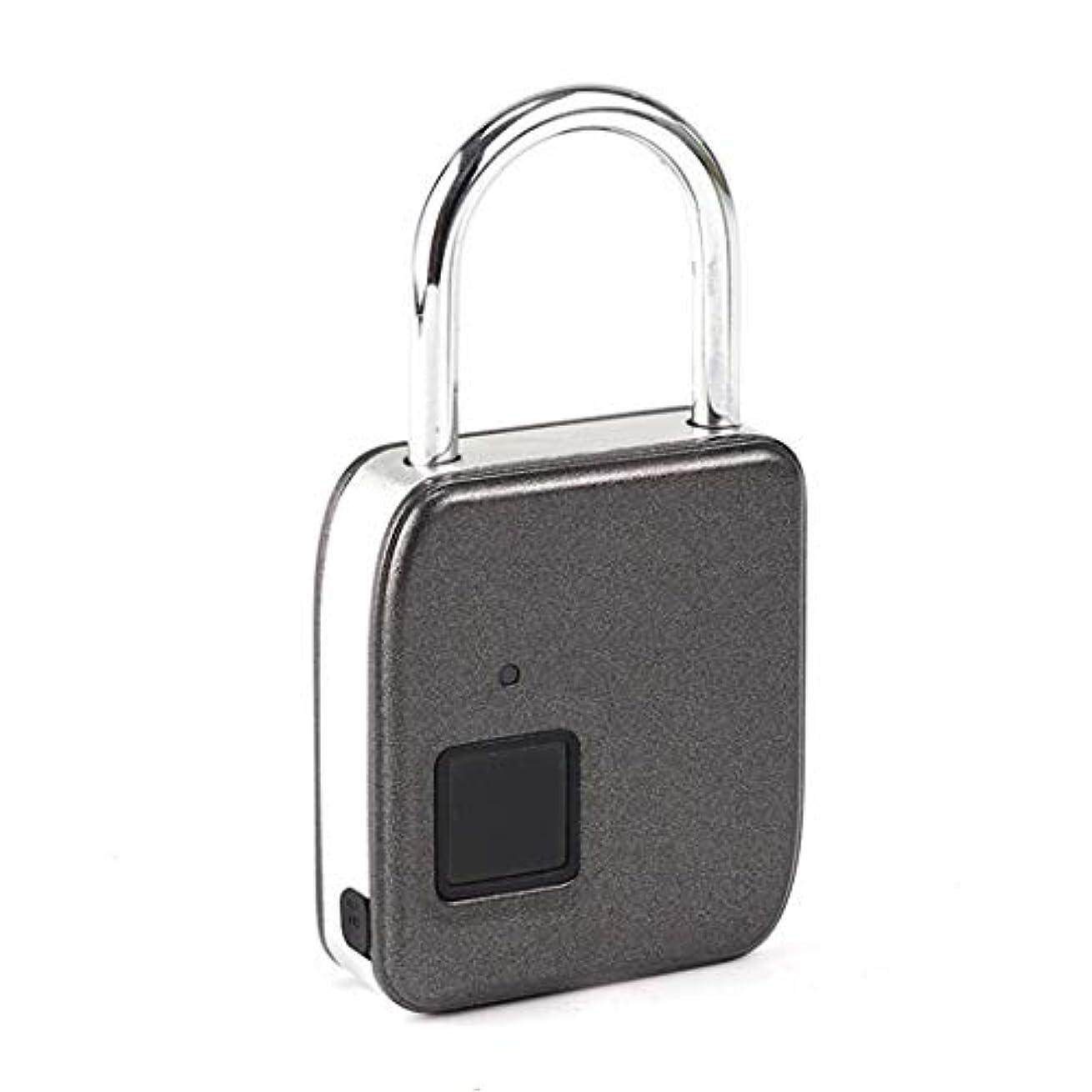 割り当てアフリカ全国ミニ電子スマートワイヤーロープ指紋バッグ小さな南京錠ヘッドジムロッカーポータブル (Color : B, Size : 8.2*2.1*15.5 cm)