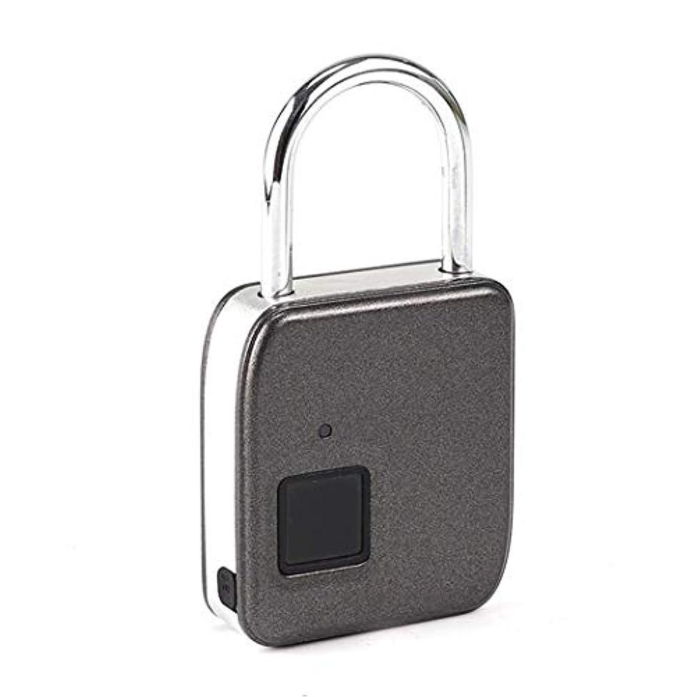 使用法ストレス横ミニ電子スマートワイヤーロープ指紋バッグ小さな南京錠ヘッドジムロッカーポータブル (Color : B, Size : 8.2*2.1*15.5 cm)