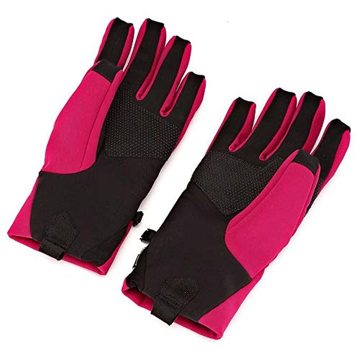 ひまわり確立教え女性の秋暖かいアウトドアスポーツ乗馬豪華な手袋