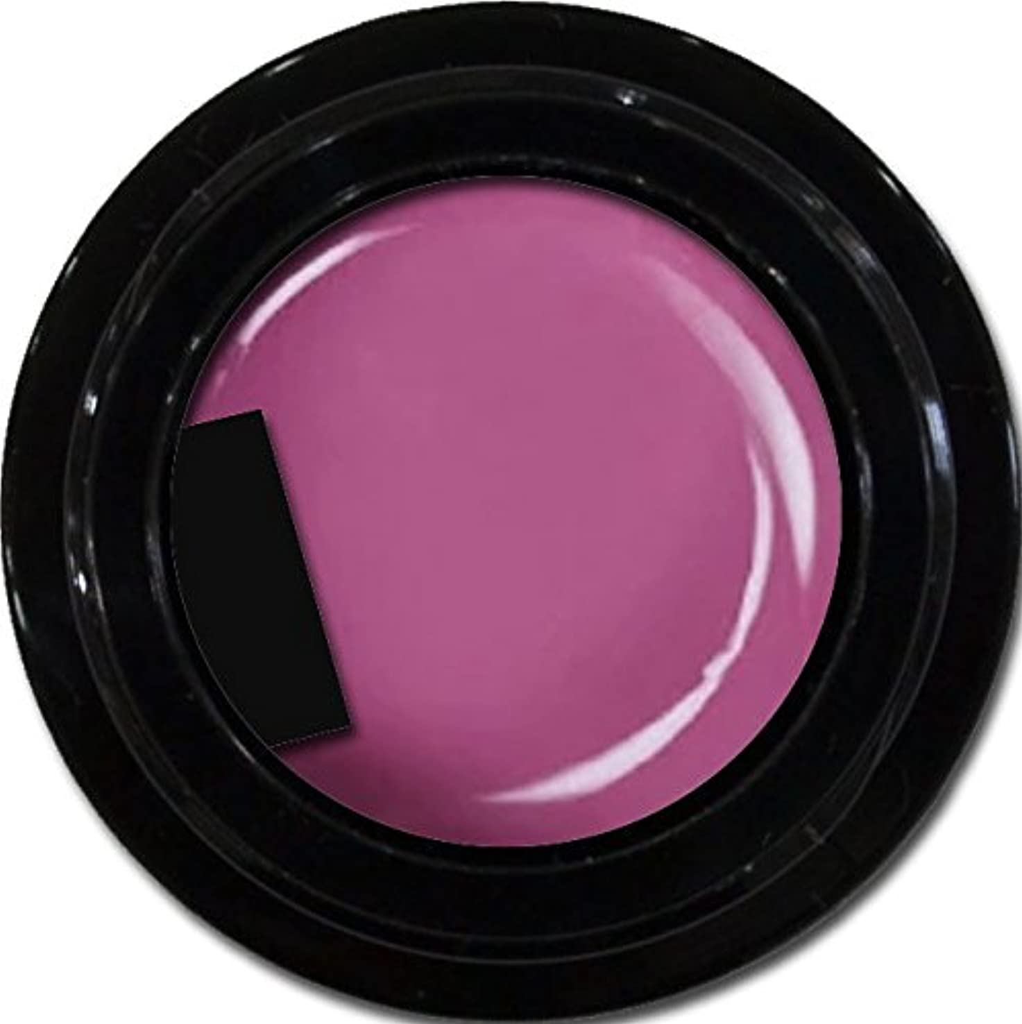 全能ジョージスティーブンソンあたたかいカラージェル enchant color gel M513 RubyViolet3g/ マットカラージェル M513ルビーヴァイオレット 3グラム