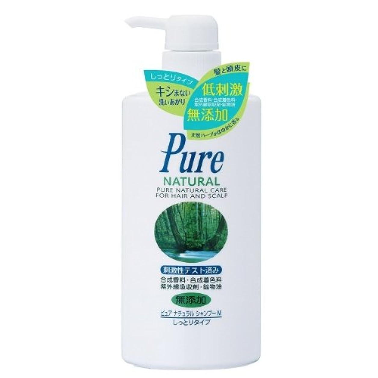 エクスタシー化粧部分Pure NATURAL(ピュアナチュラル) シャンプー M (しっとりタイプ) 500ml