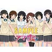 アマガミSS+ plus BD/DVD 全巻購入特典 タペストリー