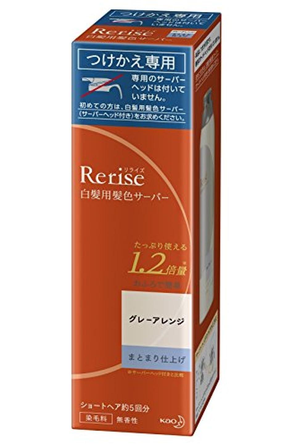 課税香港繕うリライズ 白髪染め グレーアレンジ (自然なグレー) まとまり仕上げ 男女兼用 つけかえ用 190g