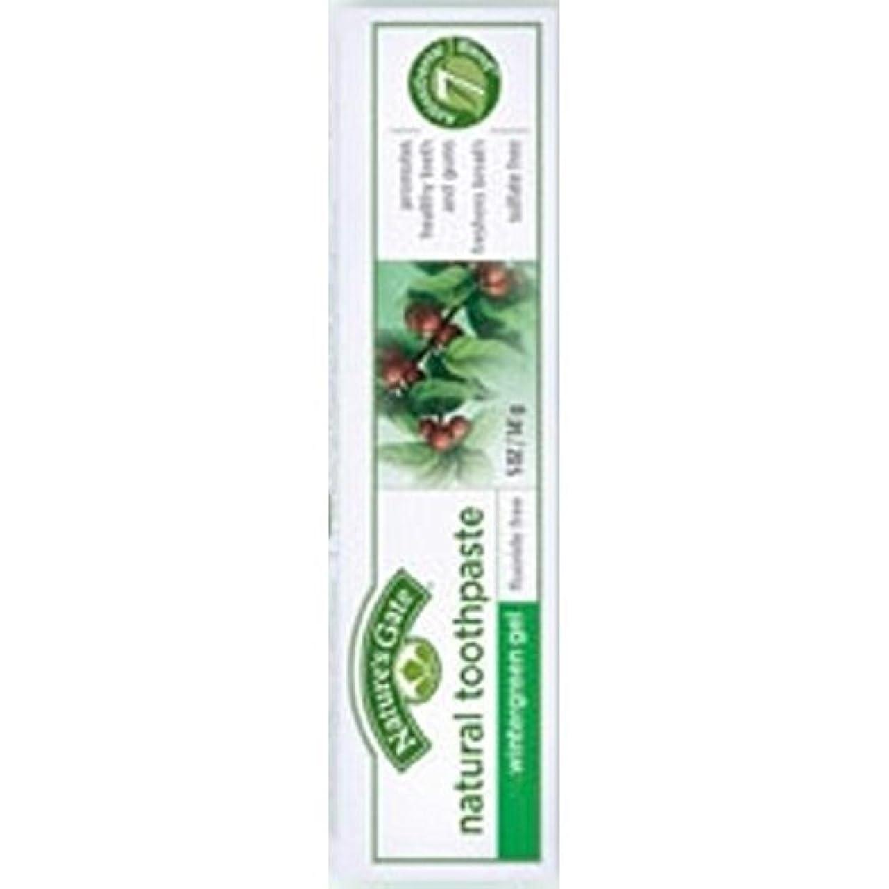 合理的援助する剪断Nature's Gate Natural Toothpaste Gel Flouride Free Wintergreen - 5 oz - Case of 6 by Nature's Gate [並行輸入品]