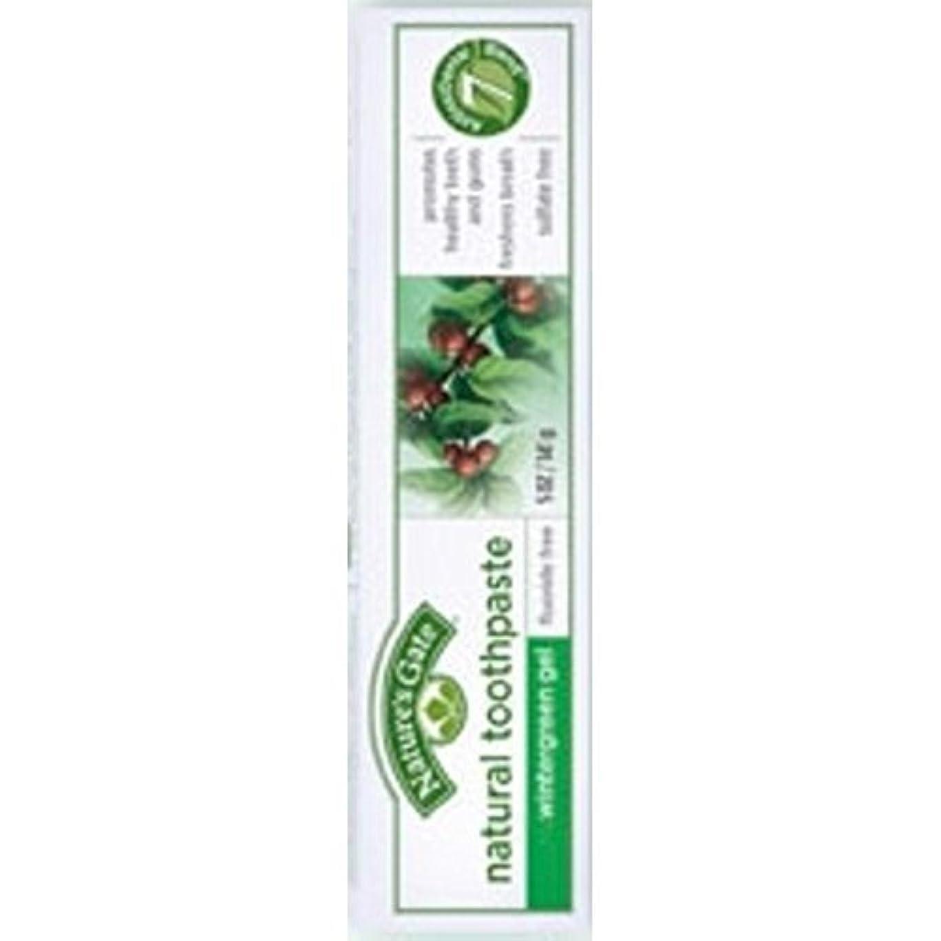 迷惑買う見捨てるNature's Gate Natural Toothpaste Gel Flouride Free Wintergreen - 5 oz - Case of 6 by Nature's Gate [並行輸入品]