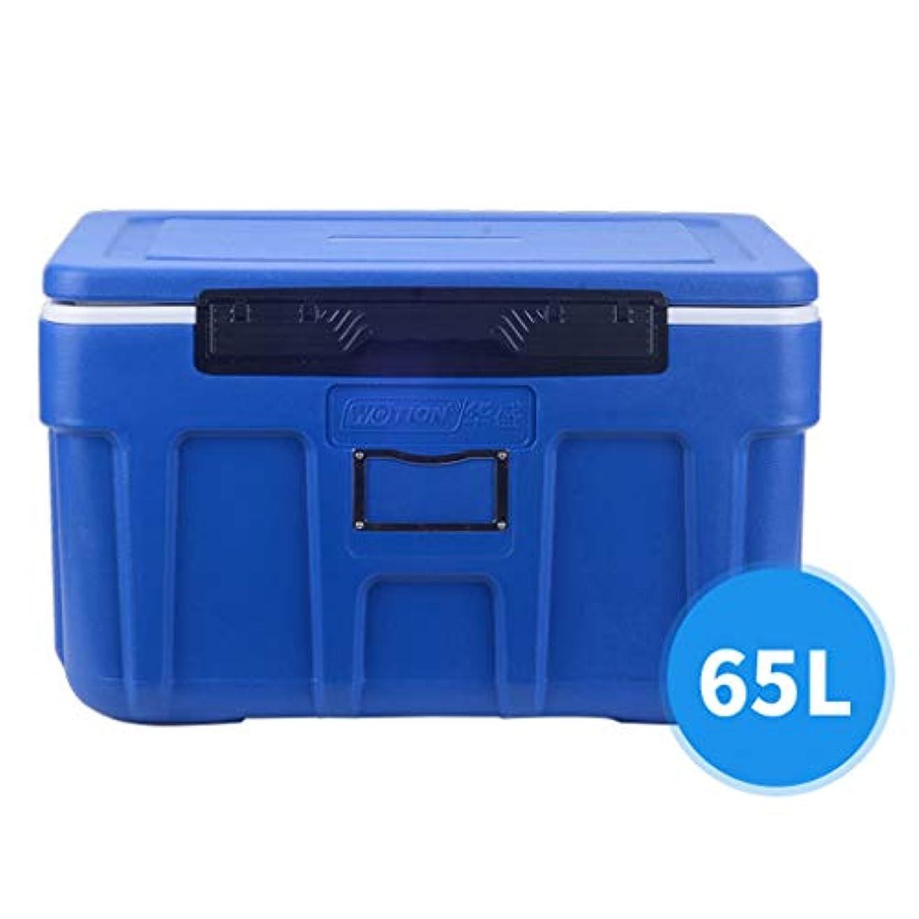 繕う噴出する素晴らしさ携帯用車の冷凍箱および絶縁材箱、 旅行?キャンプ用(65L)