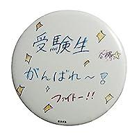 AKB48 チーム8 奥原妃奈子 缶バッジ グループセンター試験