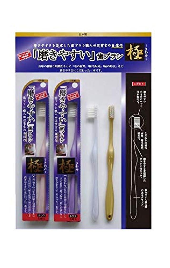 電信固体おとこ歯ブラシ職人 田辺重吉 磨きやすい歯ブラシ 極 先細毛タイプ LT-22(1本×4個セット)