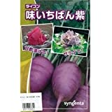 大根 種 【 味いちばん紫 】 種子 小袋(約50粒)