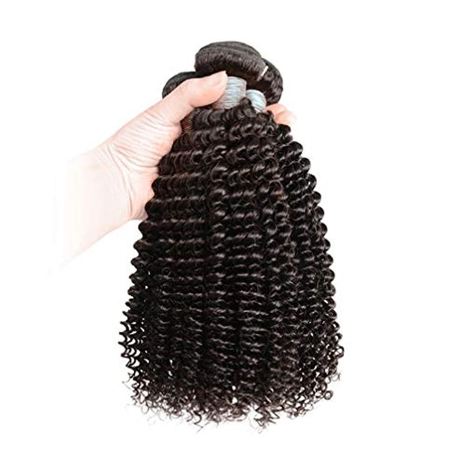 盲信忍耐資格女性ブラジルボディウェーブ髪3バンドル人間の髪織り100%加工されていないブラジルのバージンの髪人間の髪の毛