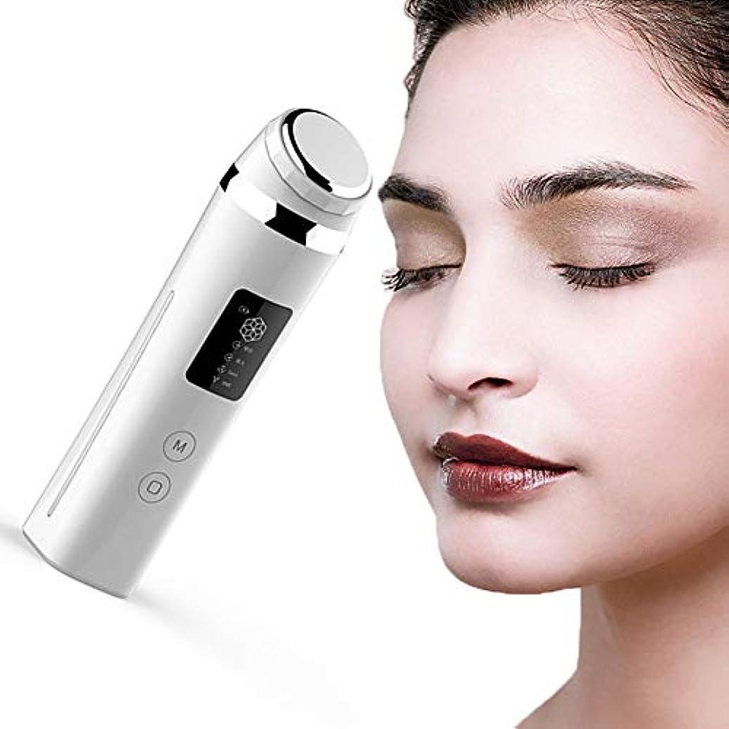 トロピカル自明愛する負イオンの導入とエクスポートイオンクレンジング機器顔美容機器顔引き締め機