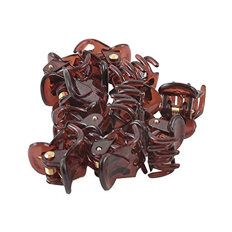 メイン例示する一般的な12ピースのヘアクリップ ミニクリップ 軽量でスタイリッシュな 楽しい外観 かわいい装飾
