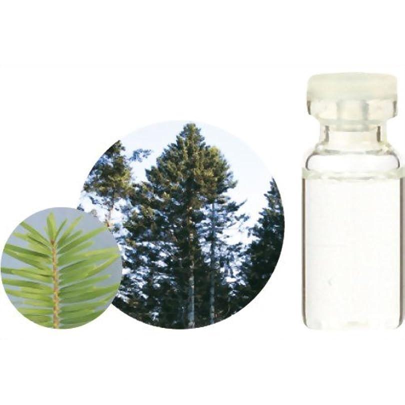 騒乱止まる意気込み生活の木 C 和精油 モミ エッセンシャルオイル 3ml