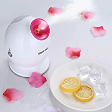 Skin Care Face Sprayer Facial Moisturizer Nanometer Deep Cleaning Home Or Salon Use Elitzia ETKD233 (Random Color)