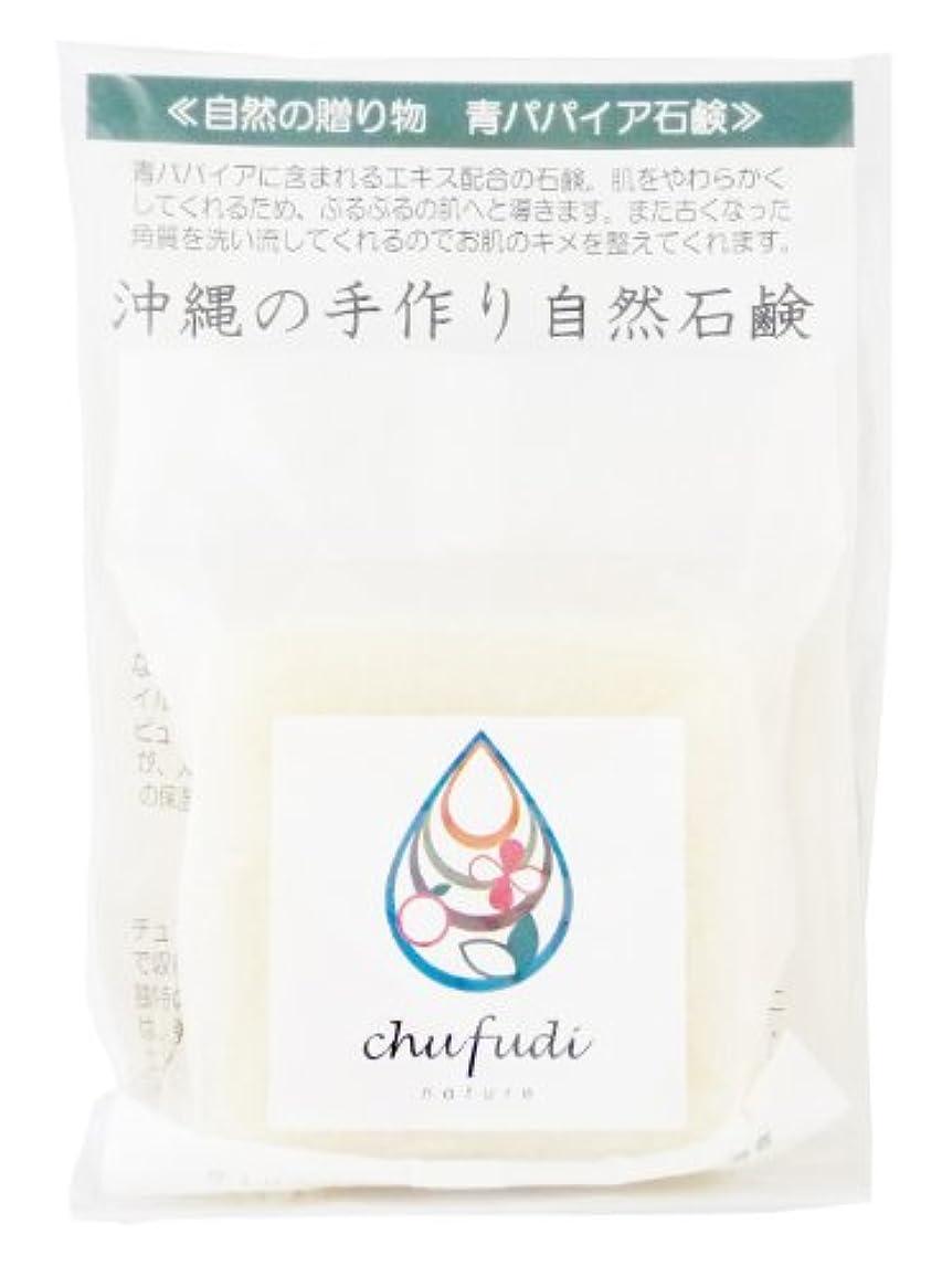 残酷きらめく勤勉チュフディ ナチュール 自然からの贈り物 青パパイヤ洗顔石鹸