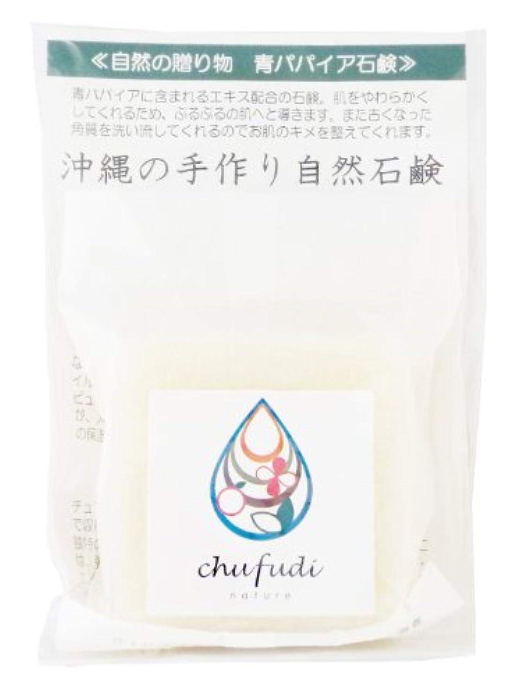 二あいまいさ団結チュフディ ナチュール 自然からの贈り物 青パパイヤ洗顔石鹸