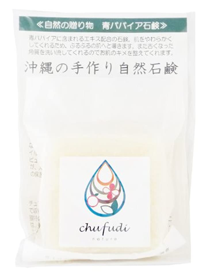 消毒剤団結に慣れチュフディ ナチュール 自然からの贈り物 青パパイヤ洗顔石鹸