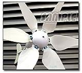 [6つ羽タイプ、DC12V/24Vコントローラー付]300W風力発電機