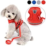 Zunea No Pull Dog Harness for Small Dog Cat Reflective Breathable Soft Mesh Padded Step-in Vest Harnesses Leash Set, Puppy Kitten Lead Escape Proof for Daily Walking Red XS
