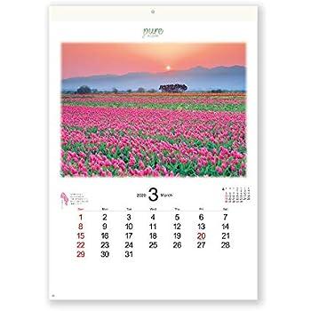 新日本カレンダー 2020年 カレンダー 壁掛け PURE ~癒やしの日本風景~ NK84