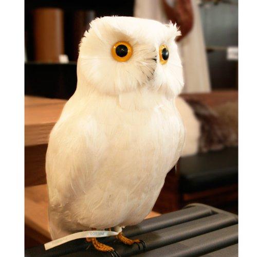 プエブコ PUEBCO バードオフジェ ARTIFICIAL BIRDS 白フクロウ White Owl Lサイズ 111070