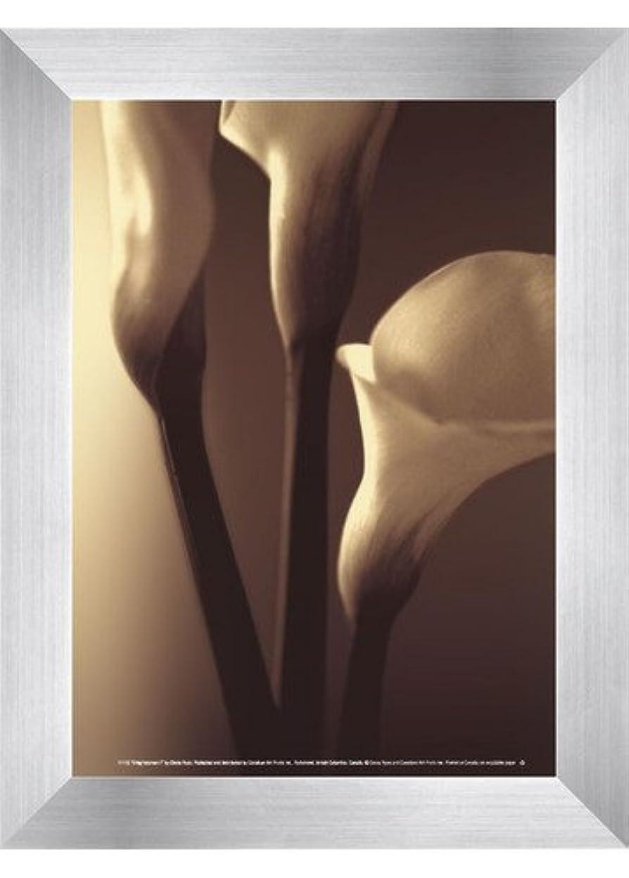 不潔抜け目のない馬力Enlightenment I by Cinzia Ryan – 5 x 7インチ – アートプリントポスター LE_194815-F9935-5x7