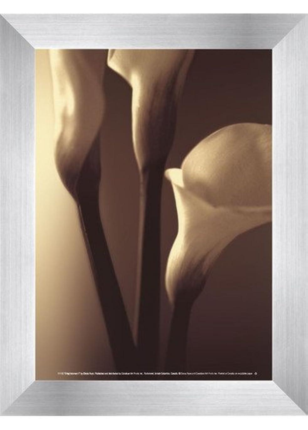 不足タイル冷凍庫Enlightenment I by Cinzia Ryan – 5 x 7インチ – アートプリントポスター LE_194815-F9935-5x7