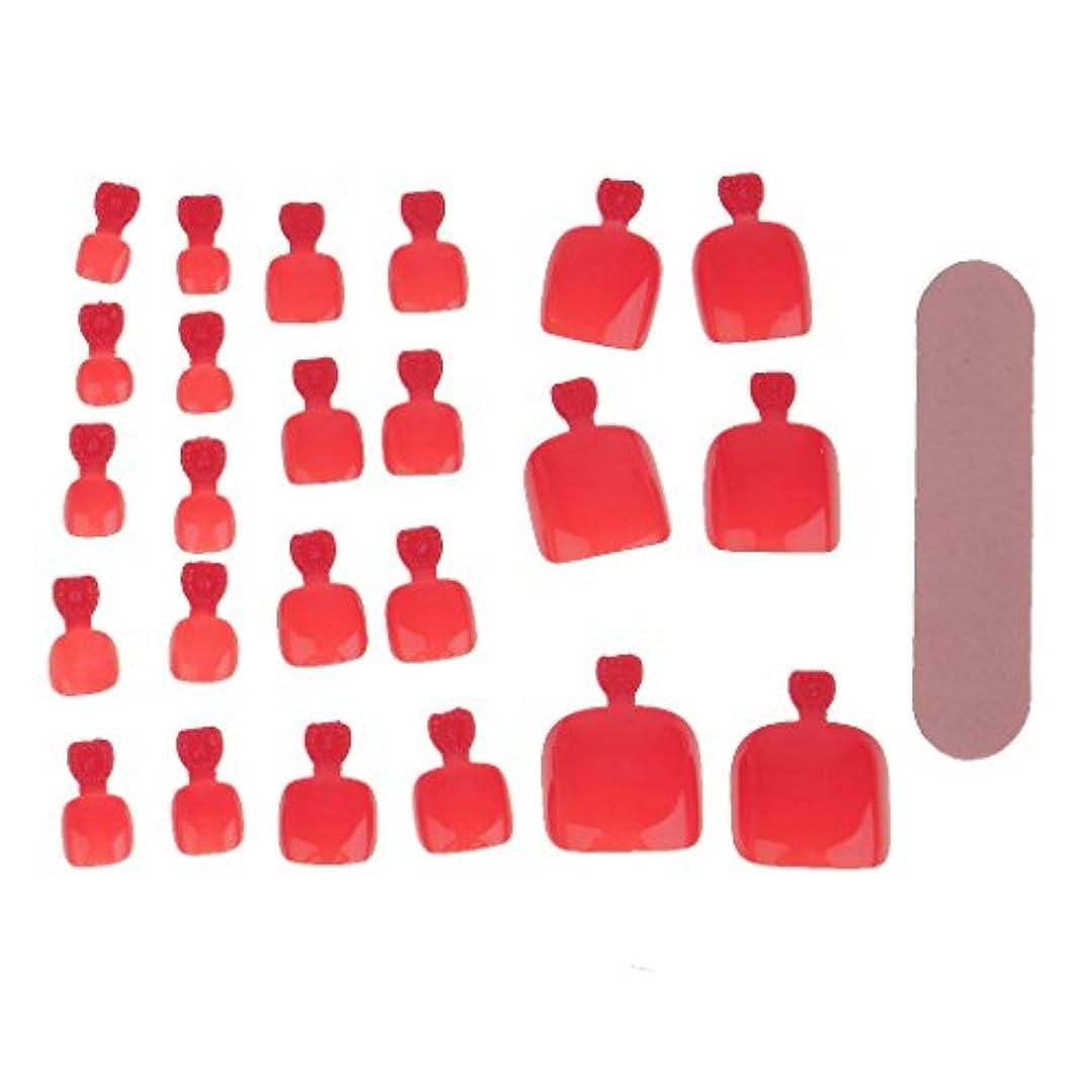 トラクター予言するペストCUTICATE ネイルヒント ネイルファイル ネイルアート フルカバー 24個 多仕様選べ - 赤