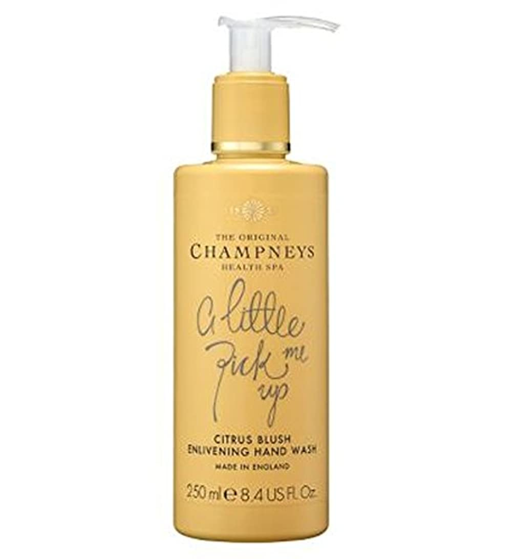オート眩惑するトーナメントChampneys Citrus Blush Enlivening Hand Wash 250ml - チャンプニーズシトラス赤面盛り上げハンドウォッシュ250ミリリットル (Champneys) [並行輸入品]
