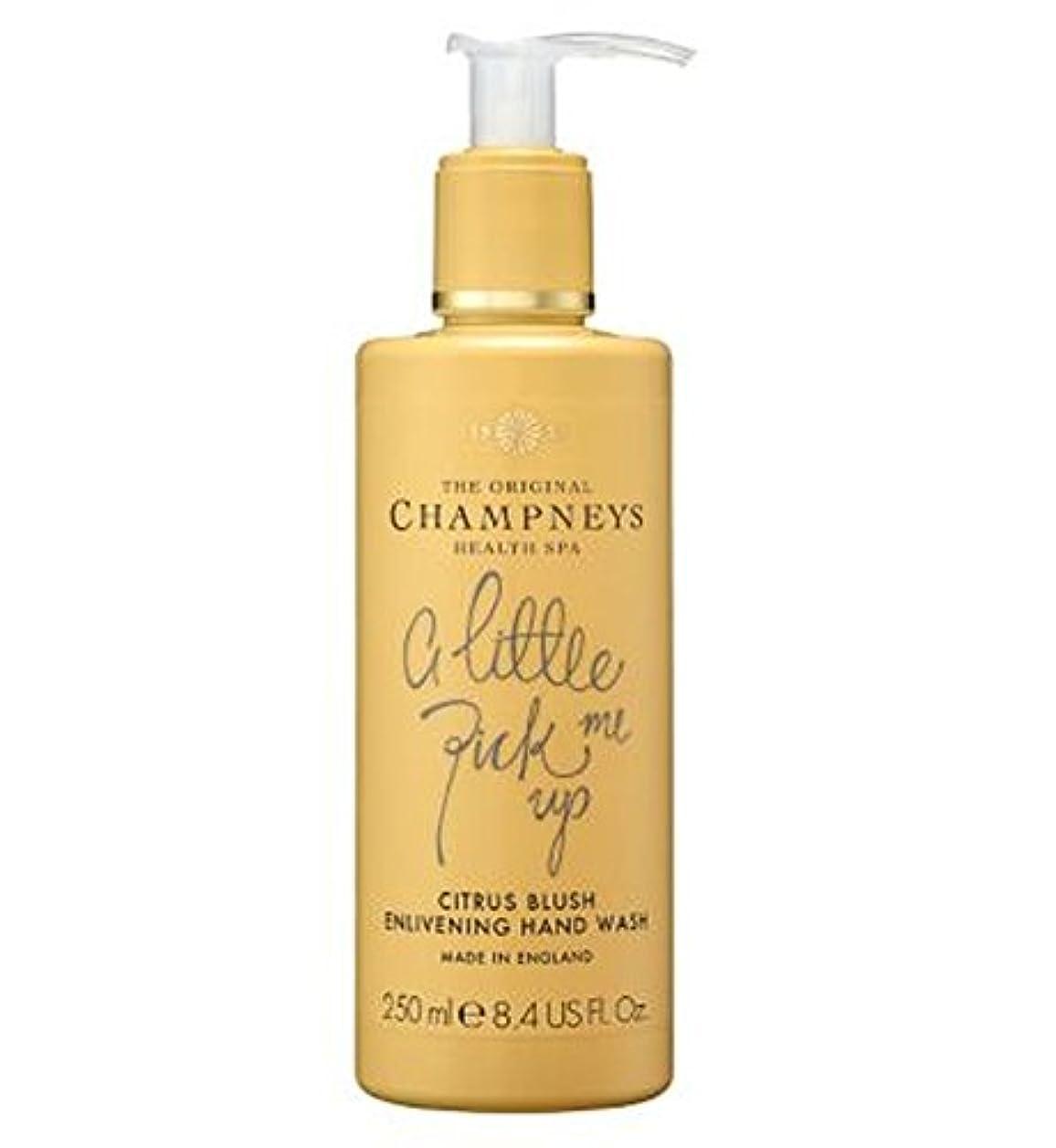 振りかけるコンソール虎チャンプニーズシトラス赤面盛り上げハンドウォッシュ250ミリリットル (Champneys) (x2) - Champneys Citrus Blush Enlivening Hand Wash 250ml (Pack...
