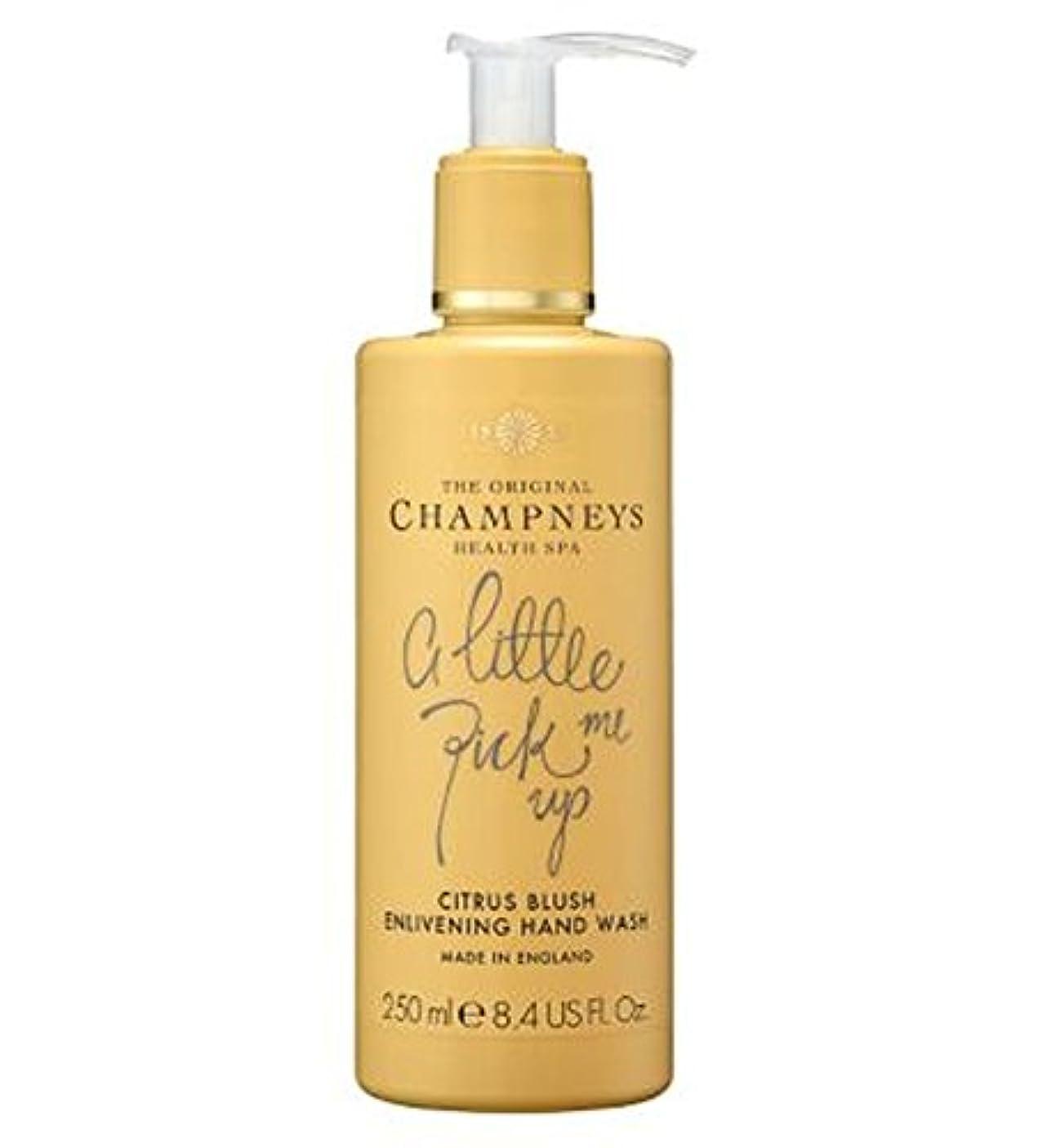 絶対の地球癒すチャンプニーズシトラス赤面盛り上げハンドウォッシュ250ミリリットル (Champneys) (x2) - Champneys Citrus Blush Enlivening Hand Wash 250ml (Pack...