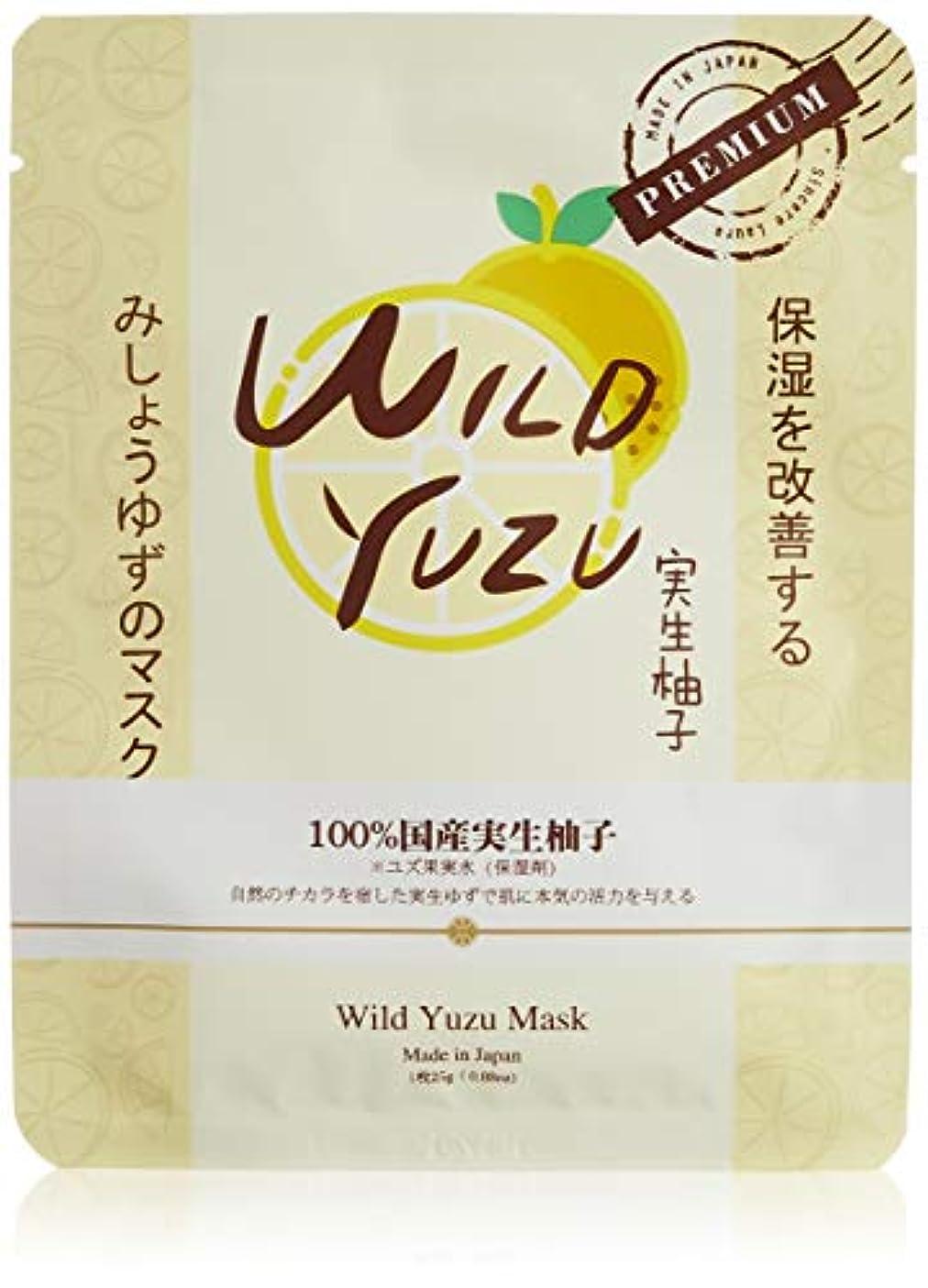 恵みのエッセンスマスク WY
