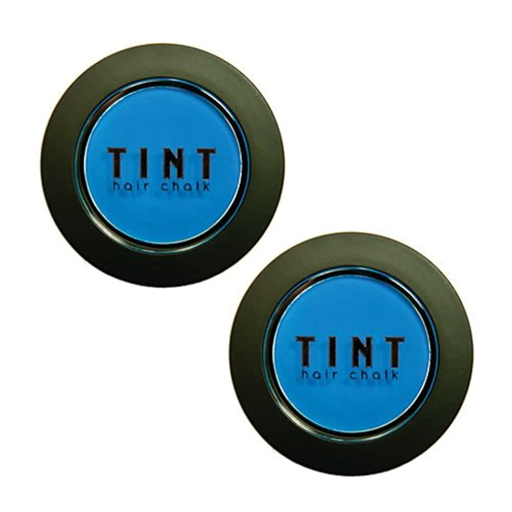 欠席比率引き金FINE FEATHERHEADS TINTヘアチョーク Blue Steel 2個セット