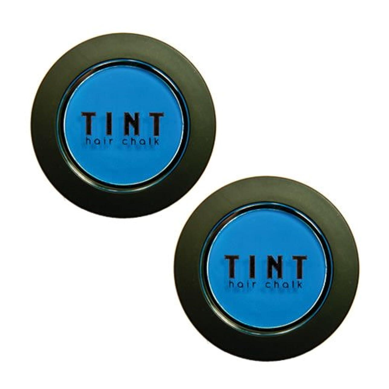 抑止する貫通する最高FINE FEATHERHEADS TINTヘアチョーク Blue Steel 2個セット