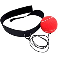 ボクシング パンチングボール 打撃練習 反射神経 動体視力 トレーニング