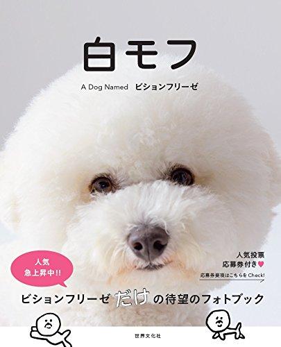 白モフ ~A Dog Named ビションフリーゼ~
