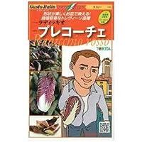 チコリー 種【 プレコーチェ 】小袋(約80粒)