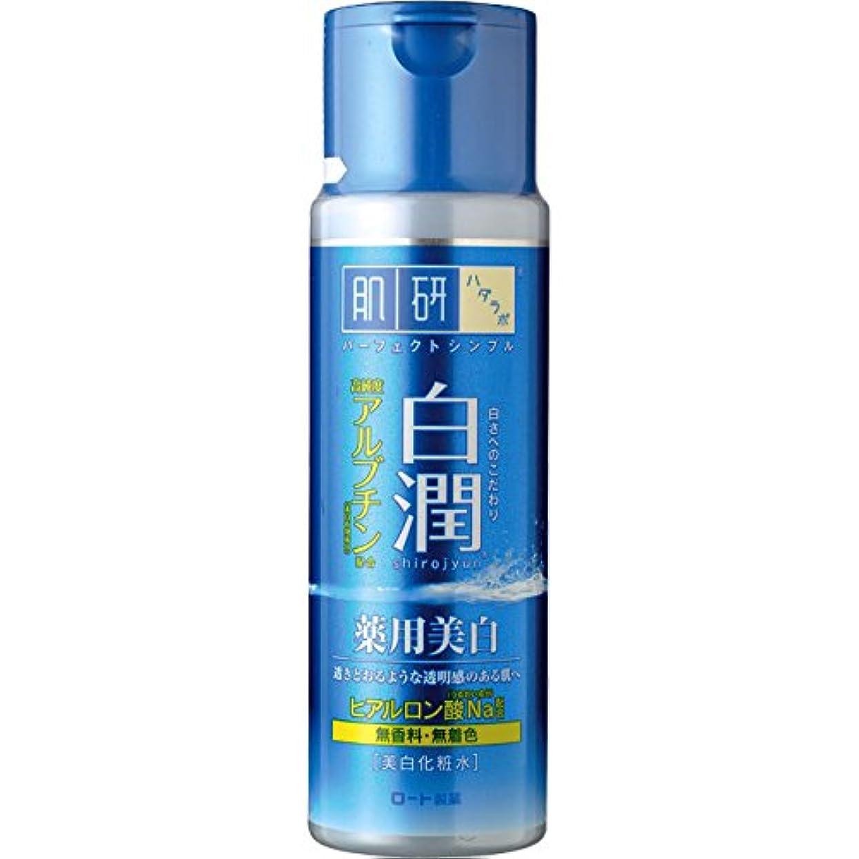 推定するソロ知覚的肌ラボ 白潤 薬用美白化粧水 170mL 【医薬部外品】