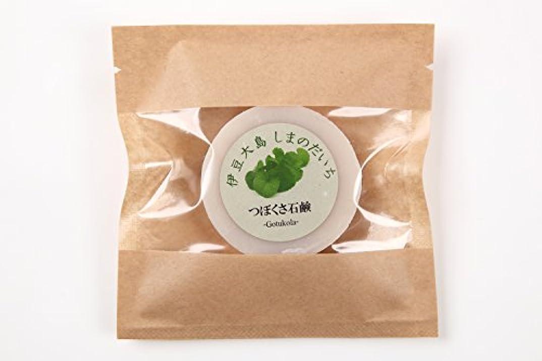 染料ベール品ツボクサ(ゴツコラ)の石鹸(伊豆大島産)