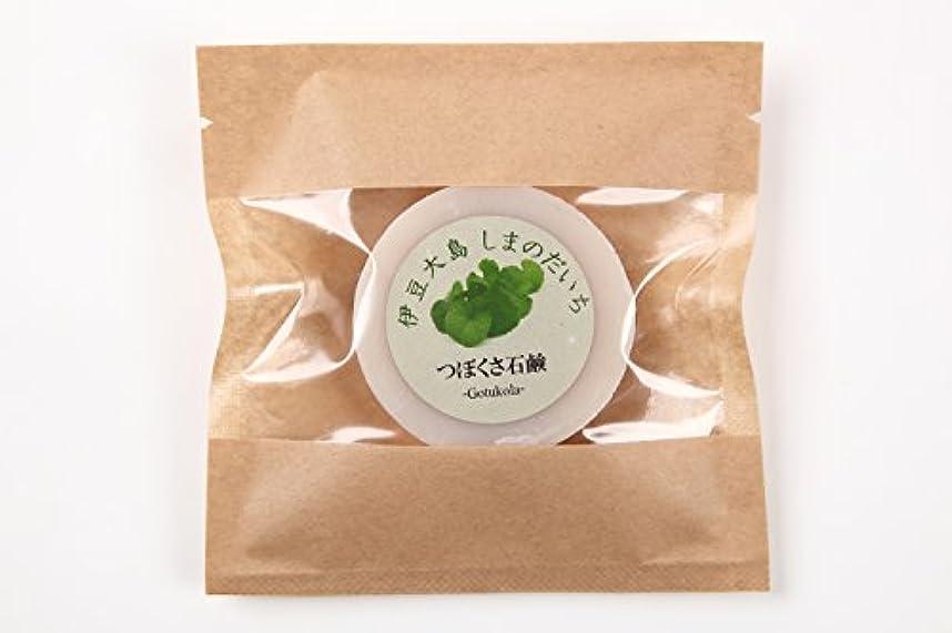 木画家タンザニアツボクサ(ゴツコラ)の石鹸(伊豆大島産)
